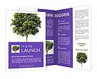 0000013826 Brochure Templates