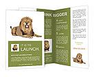 0000013872 Brochure Templates