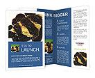 0000013920 Brochure Templates