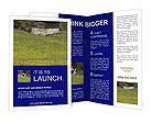 0000014114 Brochure Templates