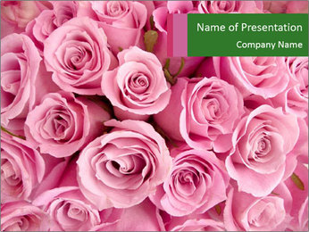 Bridal Bouquet Made of Pink Roses PowerPoint Template