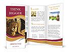 0000014220 Brochure Templates