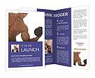 0000014327 Brochure Templates