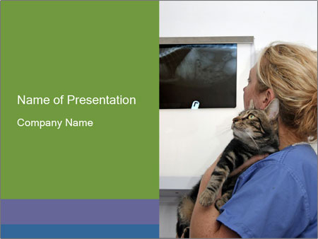 Veterinary doctor with cats x ray powerpoint template veterinary doctor with cats x ray powerpoint templates toneelgroepblik Choice Image