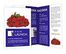 0000014331 Brochure Templates