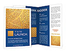 0000014380 Brochure Templates