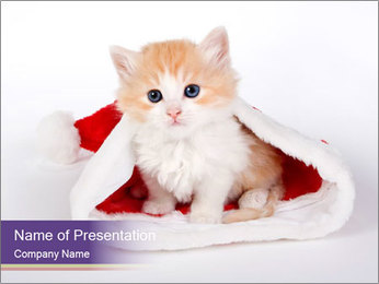 Cute Red Kitten in Santa Hat PowerPoint Template