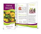 0000014565 Brochure Templates