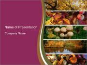 Autumn Mushroom Season PowerPoint Templates