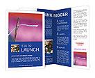 0000014621 Brochure Templates
