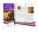 0000014790 Brochure Templates