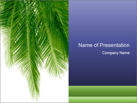 Coconut palm leaves powerpoint template backgrounds id 0000014908 coconut palm leaves powerpoint template toneelgroepblik Gallery