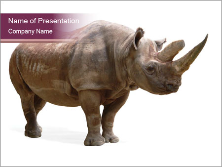 rhino powerpoint template smiletemplates com