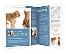 0000015081 Brochure Templates