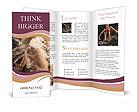 0000015134 Brochure Templates