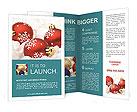 0000015253 Brochure Template