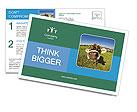 0000015278 Postcard Templates