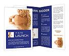 0000015283 Brochure Templates