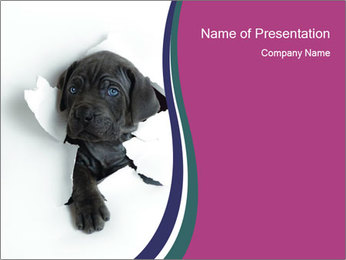 Cute Lambarod Puppy PowerPoint Template