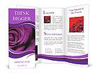 0000015497 Brochure Templates