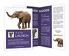 0000015774 Brochure Templates