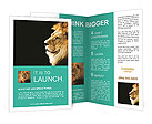 0000015783 Brochure Templates