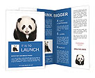 0000015789 Brochure Templates