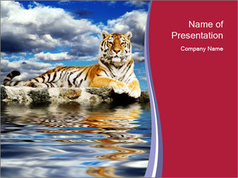 Tiger in the Water PowerPoint Template