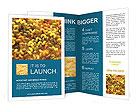 0000015842 Brochure Templates