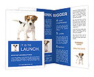 0000015875 Brochure Templates