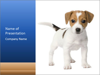 Standing Puppy PowerPoint Template