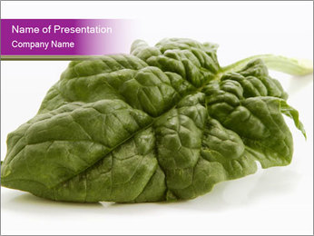 Organic Spinach PowerPoint Template