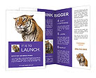0000016037 Brochure Templates