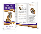 0000016038 Brochure Templates