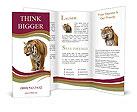 0000016039 Brochure Templates