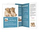 0000016052 Brochure Templates