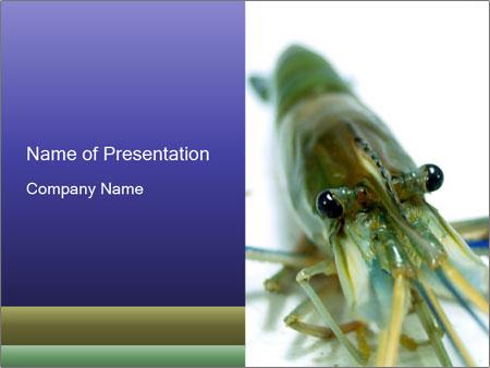 栄養 powerpointプレゼンテーションのテンプレート smiletemplates com