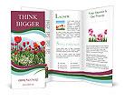 0000016241 Brochure Templates
