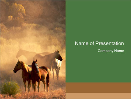 Four Wild Horses Powerpoint Template Backgrounds Google Slides