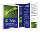 0000016352 Brochure Templates