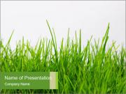 Spring Grass PowerPoint Templates