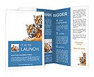 0000016447 Brochure Templates