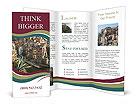 0000016465 Brochure Templates
