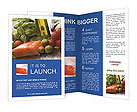 0000016545 Brochure Templates