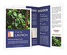 0000016754 Brochure Templates