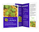 0000016813 Brochure Templates