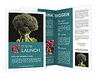 0000016825 Brochure Templates