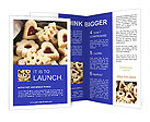 0000016870 Brochure Templates