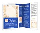 0000016873 Brochure Templates