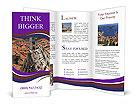 0000016900 Brochure Templates